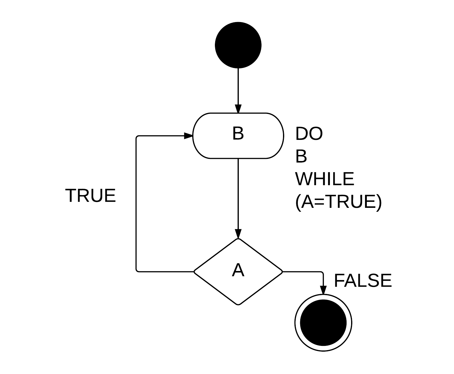 The Do While Loop Vs The While Loop