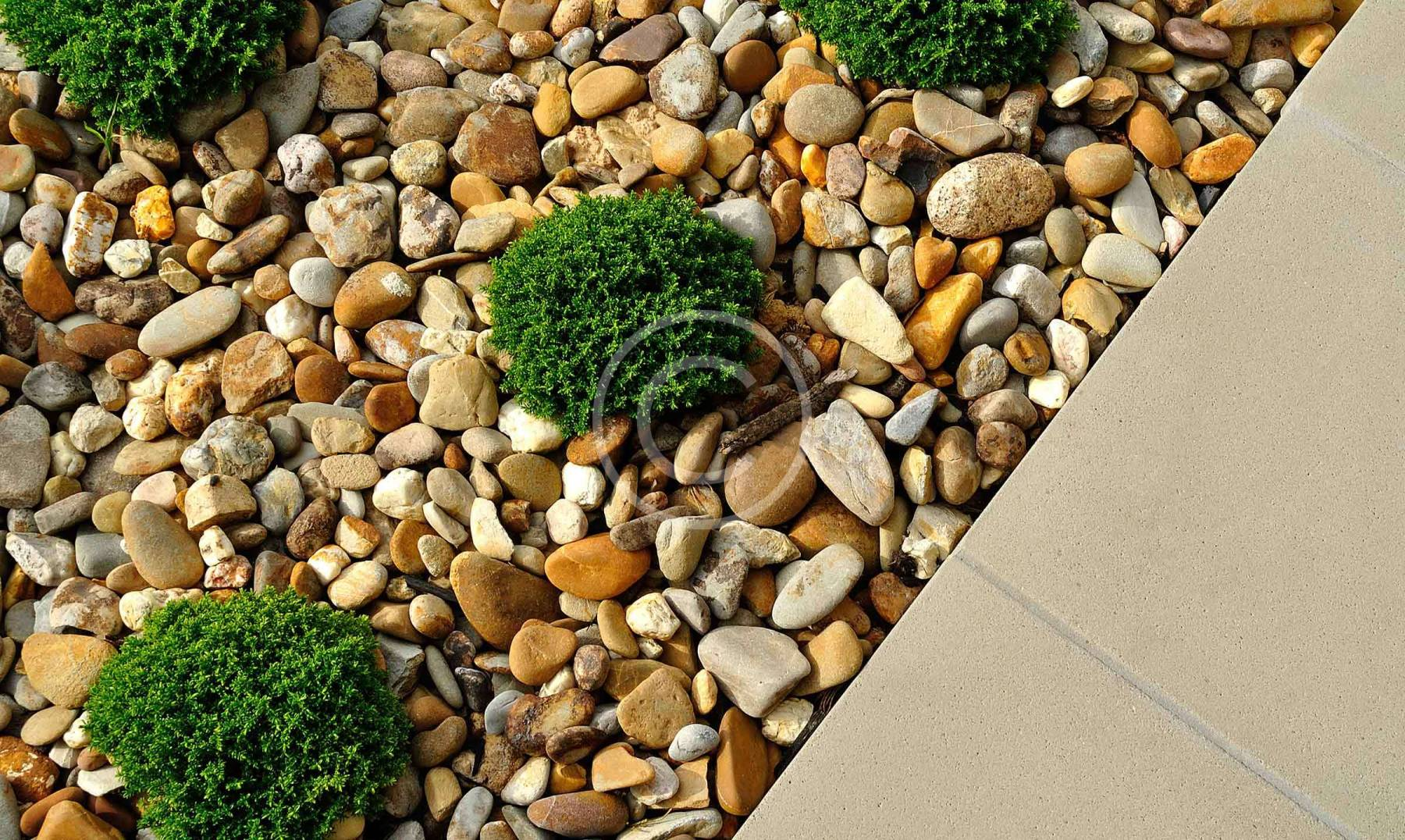 Backyard Landscaping Trends of 2015 Year