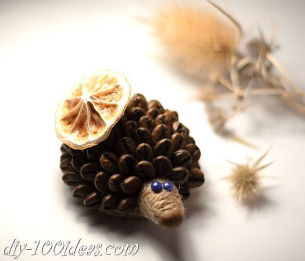 DIY Coffee Bean Hedgehog (2)