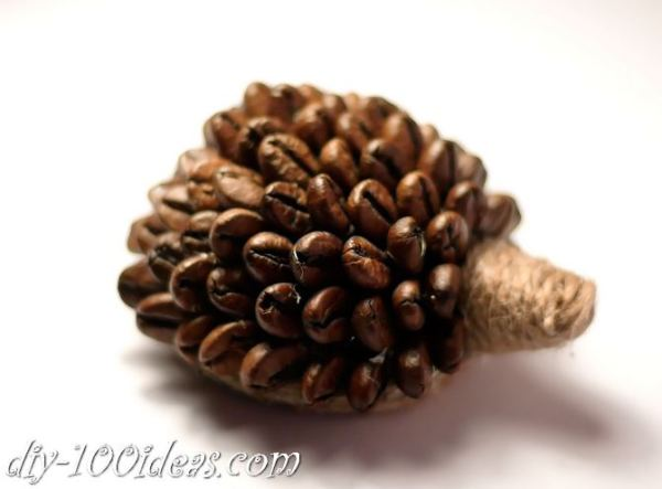 DIY Coffee Bean Hedgehog (3)