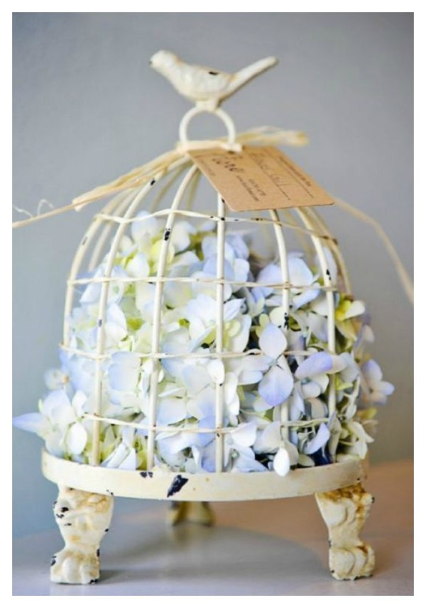 styling bird cages2