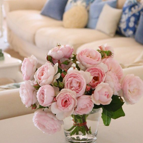 make your home feel good roses