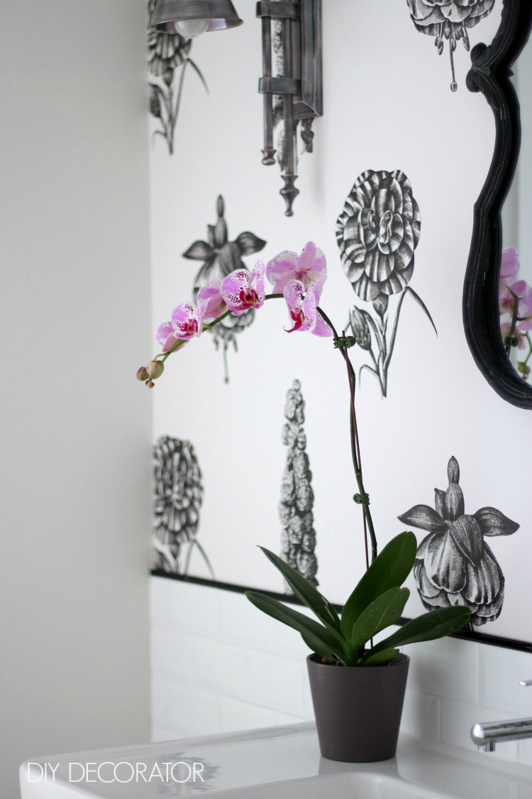 botanical powder room purple orchid