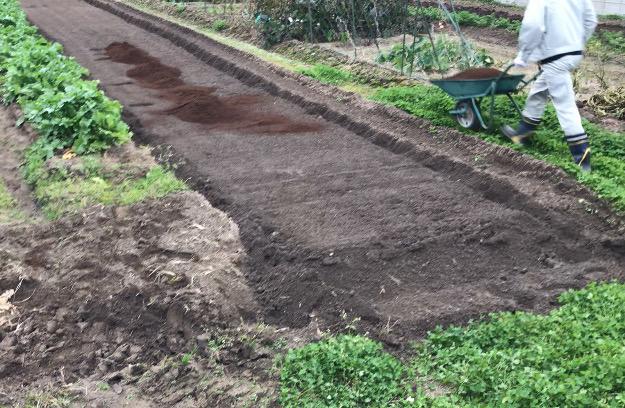堆肥を畑に撒く