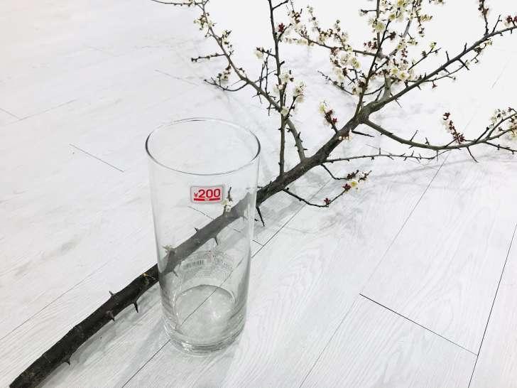 木を飾る植木鉢がない