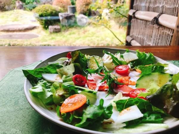 梅蓮のランチの前菜のサラダにはスモークサーモンが入っている