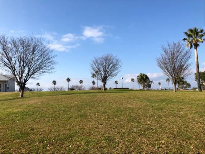 ガラスの砂浜の横の森園公園は開放的でお散歩にぴったり