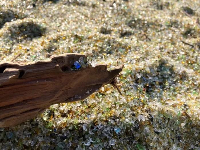 ガラスの砂浜に流木が落ちていました