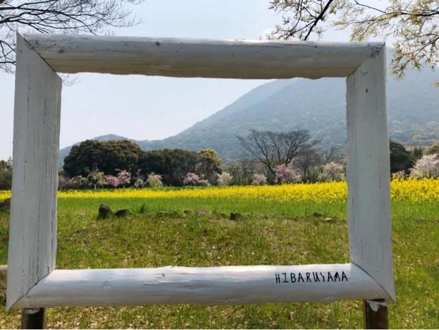 春の花まつりの写真スポットは沢山ある