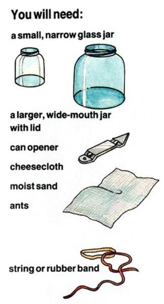 Image describing the needed materials