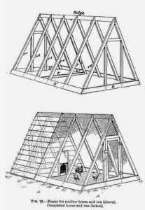 Read more about the article Chicken House Plans – Building A Chicken House