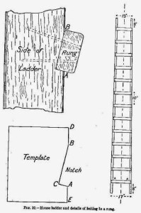 Read more about the article How to Build a Ladder – Home Projects