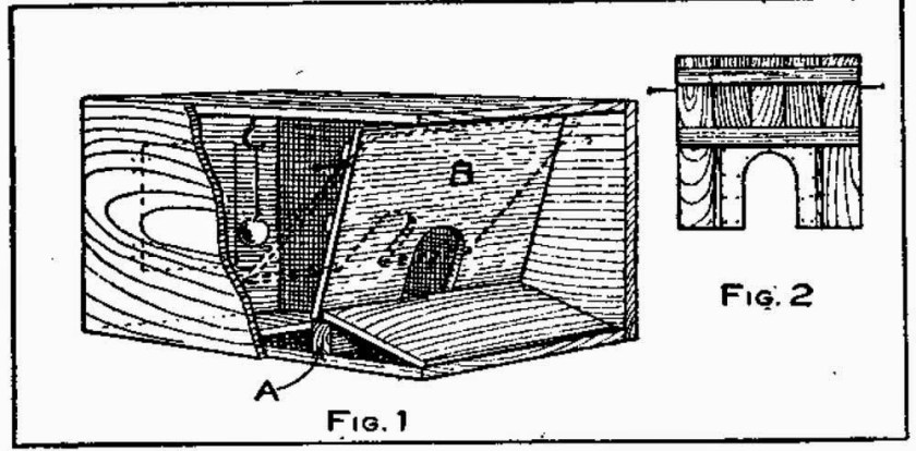 How to Build a Rabbit Trap - Self-Setting Trap