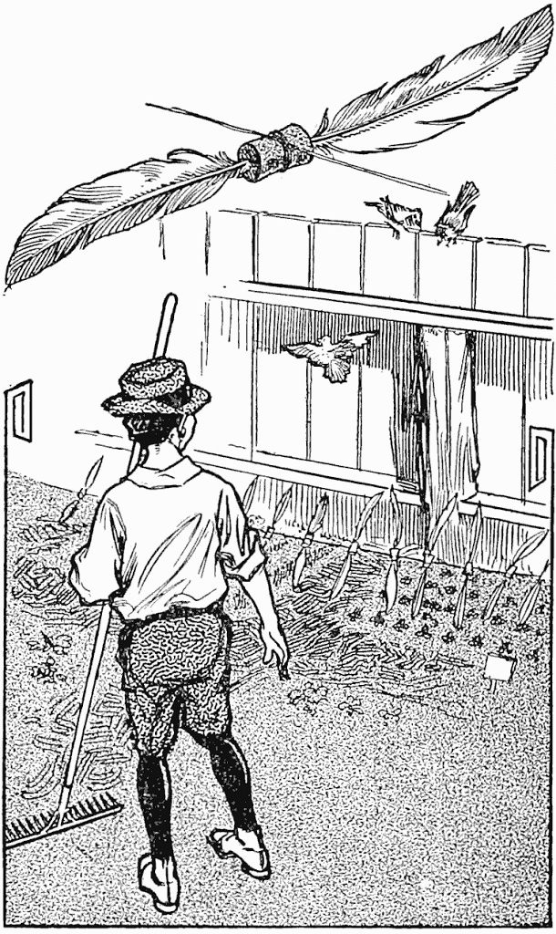 Read more about the article How to Keep Birds Away From Garden –  A Garden-Bed Scarecrow