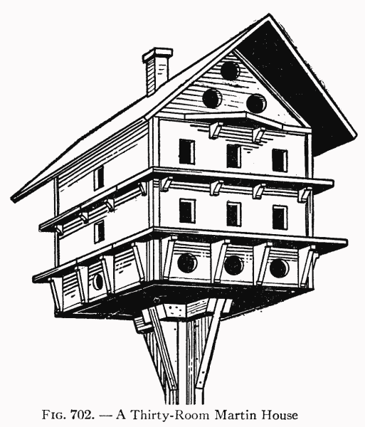 Martin birdhouse plans – How to make a birdhouse out of wood