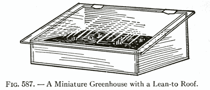 FlG. 587. — A Miniature Greenhouse with a Lean-to Roof.