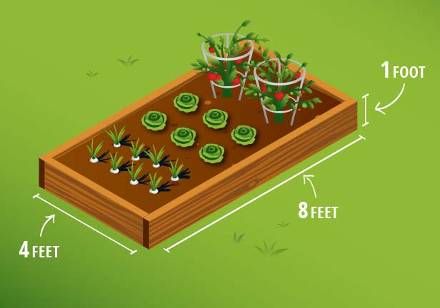 Planting Raised Garden Box