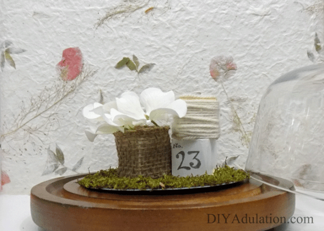 For this Thrift Store Decor Upcycle Challenge I am changing things up a little. The mix of textures in this upcycled farmhouse vignette cloche are gorgeous!