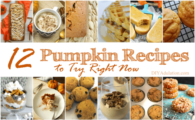 Today let's focus on the sweeter side of things! These 12 pumpkin recipes to try right now will have you doing a happy dance for sure!