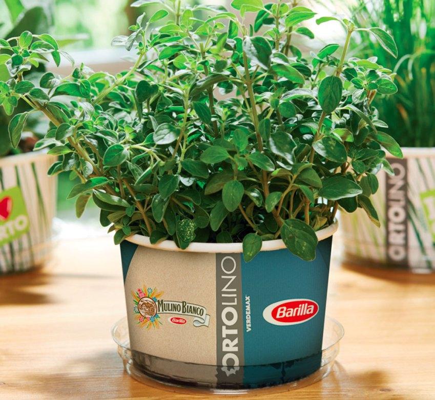 La campagna di co-marketing Verdemax-Barilla
