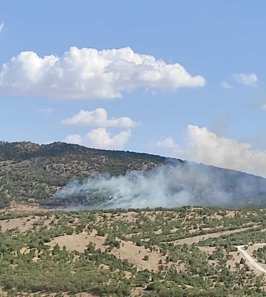 Dicle ilçesi kırsalında orman yangını çıktı