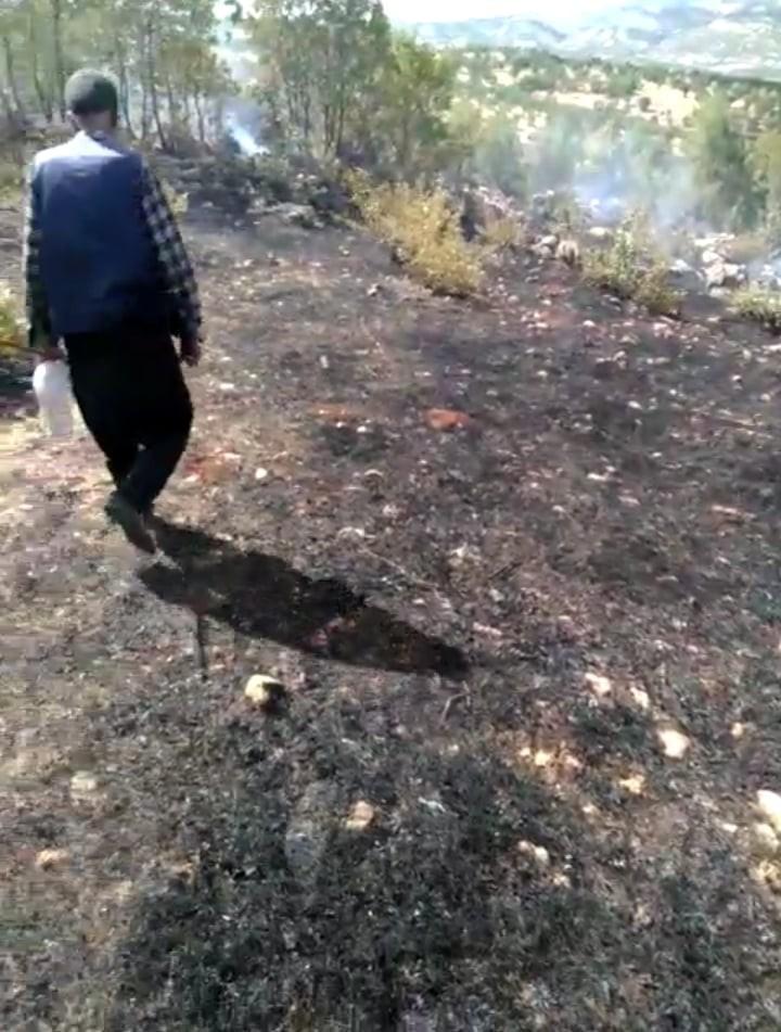 Dicle kırsalında çıkan örtü yangını söndürüldü