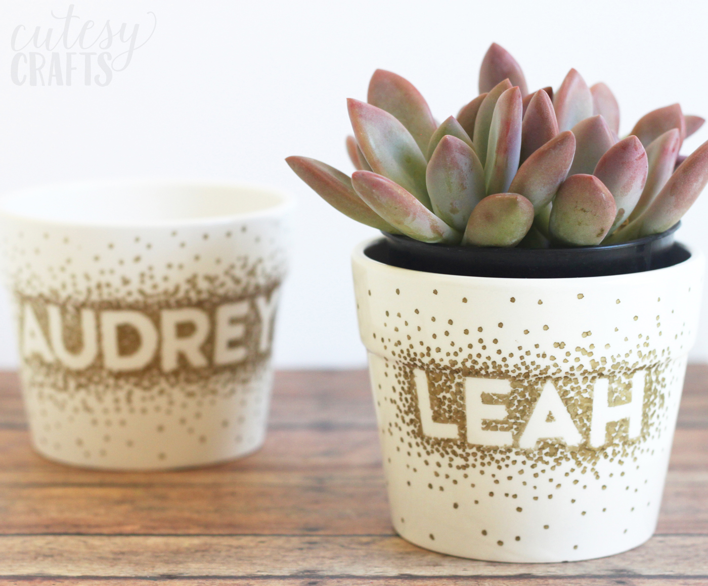 Use a Sharpie to make dots in this unique flower pot craft! It's so easy that a child could do it, and you just need a few simple supplies.