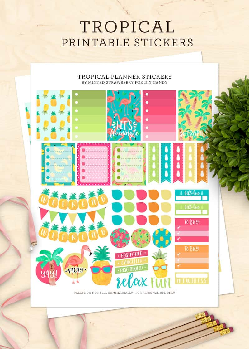 Colorful Tropical Printable Planner Stickers Diy Candy