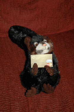 Stuffed animal holding credit card