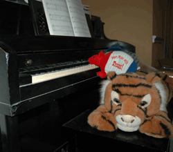 Armadillo playing piano