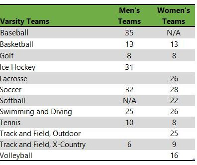 Niagara University athletic teams