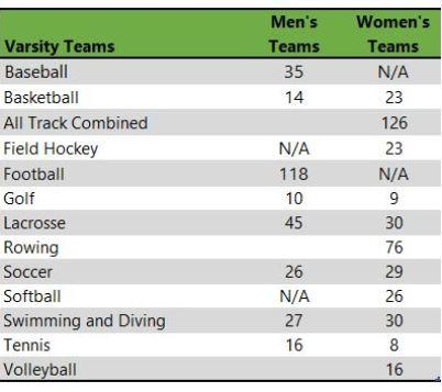 University of Delaware athletic teams