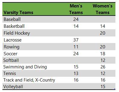 Clark University athletic teams