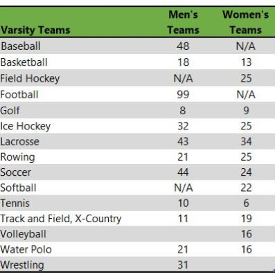 Mercyhurst Univresity athletic teams