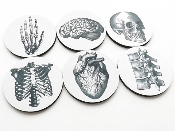 gifts COASTERS hostess graduation doctor Anatomy medical student cardiology skull anatomical heart party favors geekery teacher nurse chiro by artaltered