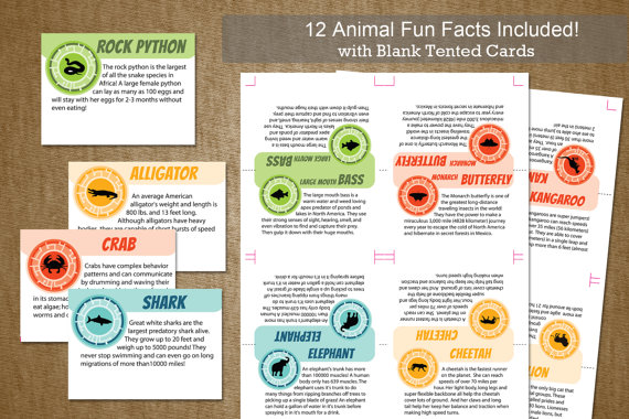 Wild Kratts Birthday Party Tented Animal Cards INSTANT DOWNLOAD – 12 fun creature facts with BLANK card included- DiY Self Printable File by jackaroodesigningco