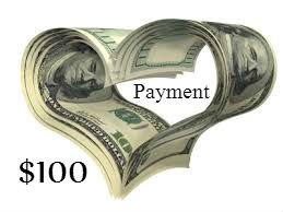 PAYMENT PLAN One Hundred Dollar PAYMENT by TreadLightGear