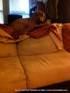 Before picture of the tan microfiber on the couch, disgusting.