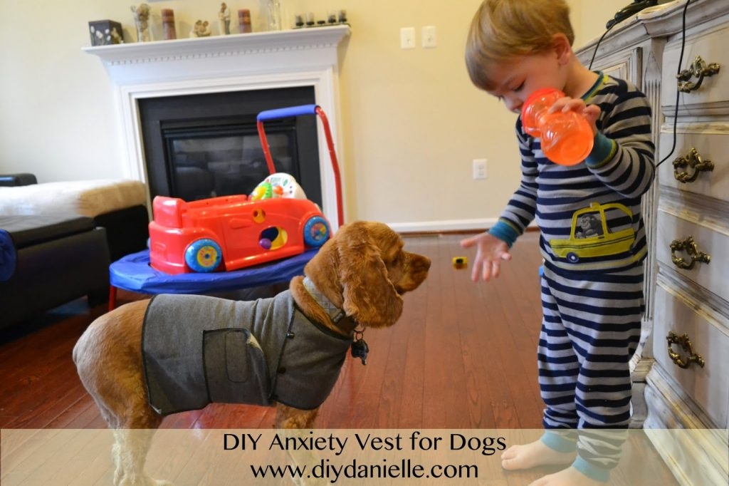 How to make your own anxiety vest for dogs