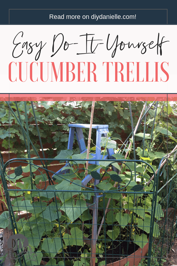 This fantastic cucumber trellis is easy and FAST to DIY. The blue is gorgeous with the green of the cucumber plants!