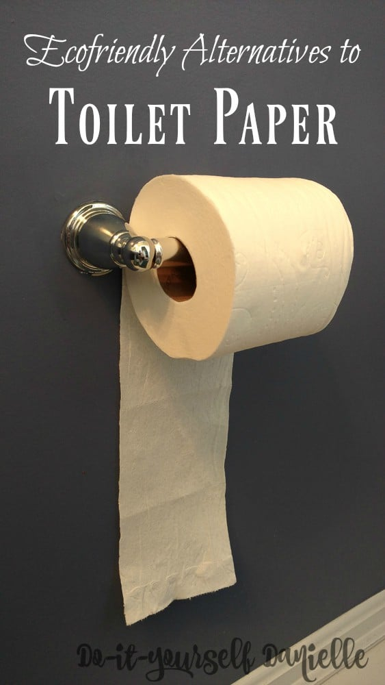 Ditching toilet paper for more ecofriendly options.