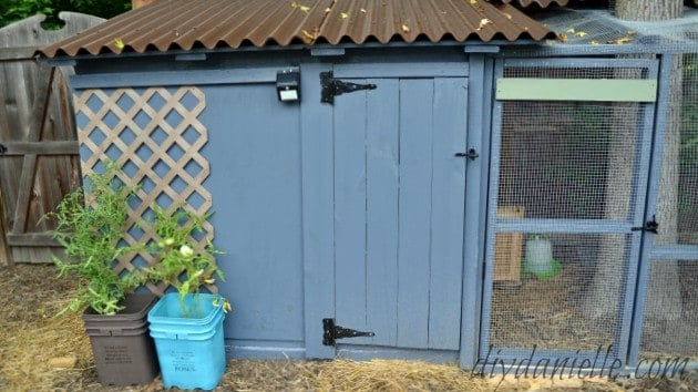 Build an Easy to Clean Duck Coop with Attached Storage