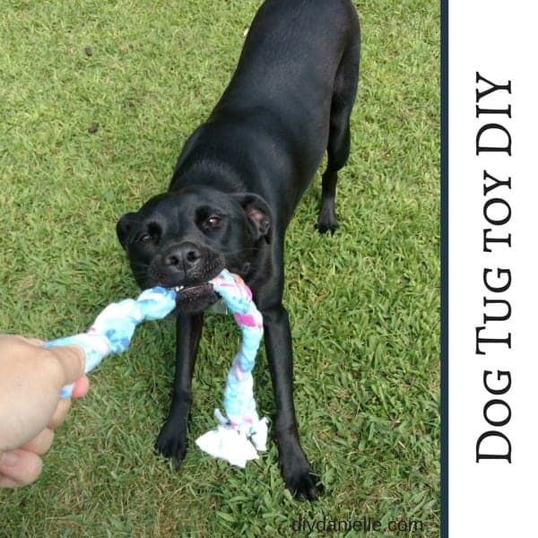 How to make a tug toy for dogs.