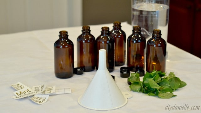 Simple ingredients for making mint extract.