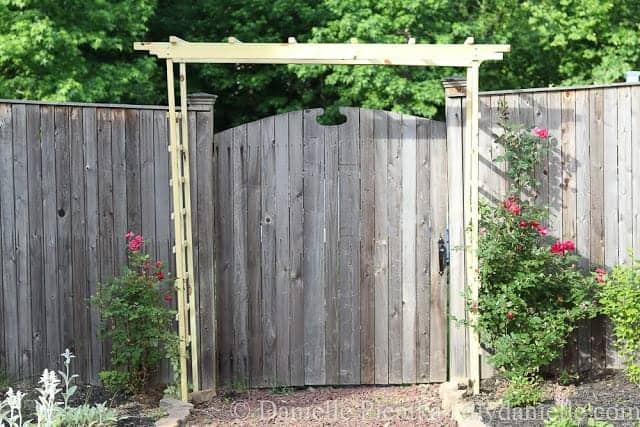 Garden arch with a trellis on either side for knockout roses.