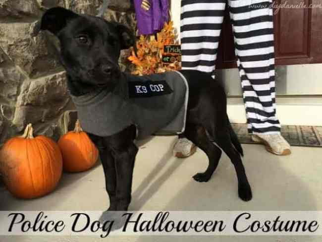 DIY Dog Costume: Police Dog
