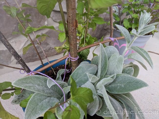 Use twine or embroidery thread to build the twig trellis.