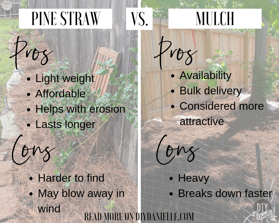 Pinestraw vs. Mulch: Pros and Cons of both.