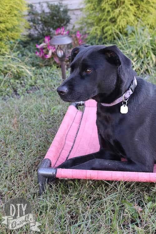 This PVC DIY Dog Bed is easy to make with basic sewing skills. Make two sets of covers for easy washing.