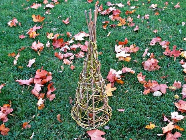 Small trellis cone made from willow branches.